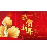 常州市盛鹏有限公司祝新老朋友2019新春快乐!