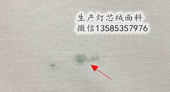 染厂车间在面料染色中产生的染疵大全:霉斑