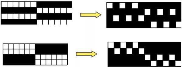 凸条组织绘制方法